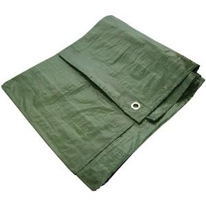 Am-Tech 12' x 8' Green Tarpaulin