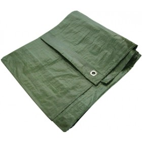 Am-Tech 12' x 8' Green Tarpaulin